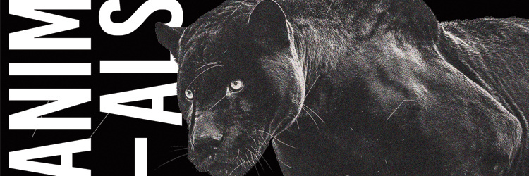 ANIMALS ◊ House to Techno Vol.5